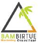 Bambirtue Marketing Consultant Logo